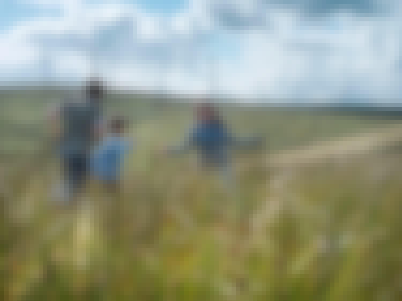 Familie im Feld mit Windanlagen im Hintergrund