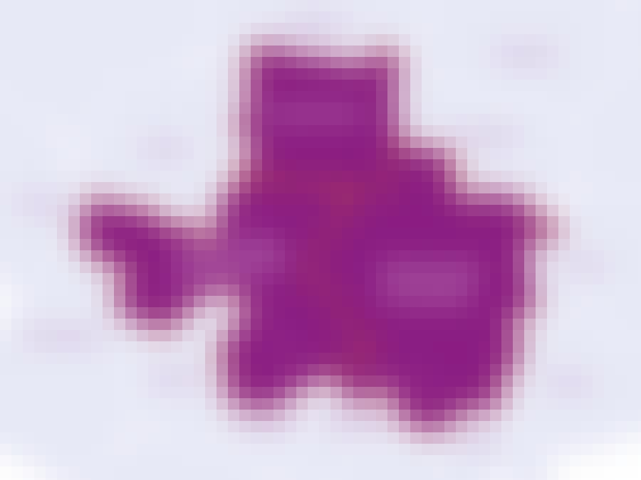 enercity_netz_gasumstellung_karte_WEB.jpg